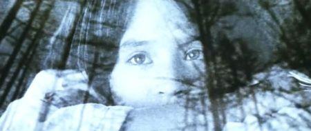 Paula's Reflections