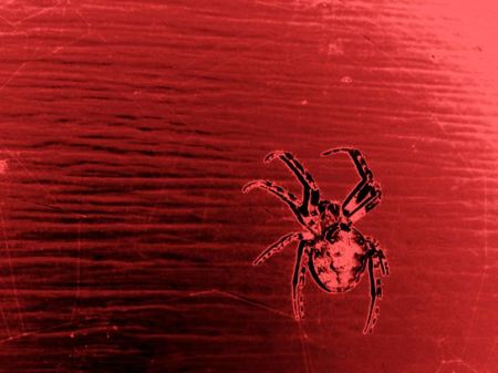 The Angry Red Spider