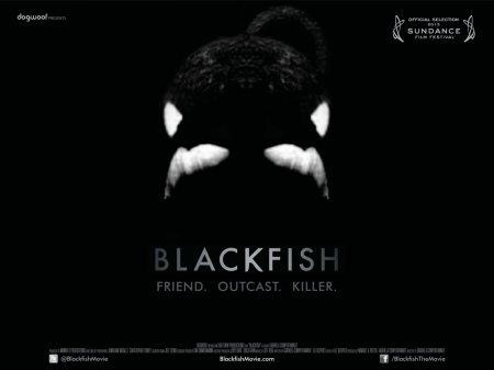 Blackfish-UK-Quad-Poster
